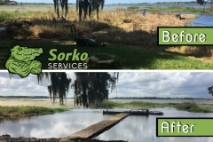 Central Florida Pond Maintenance. Before and After.