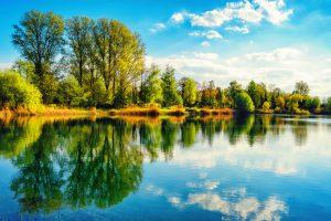 Pond Circulator