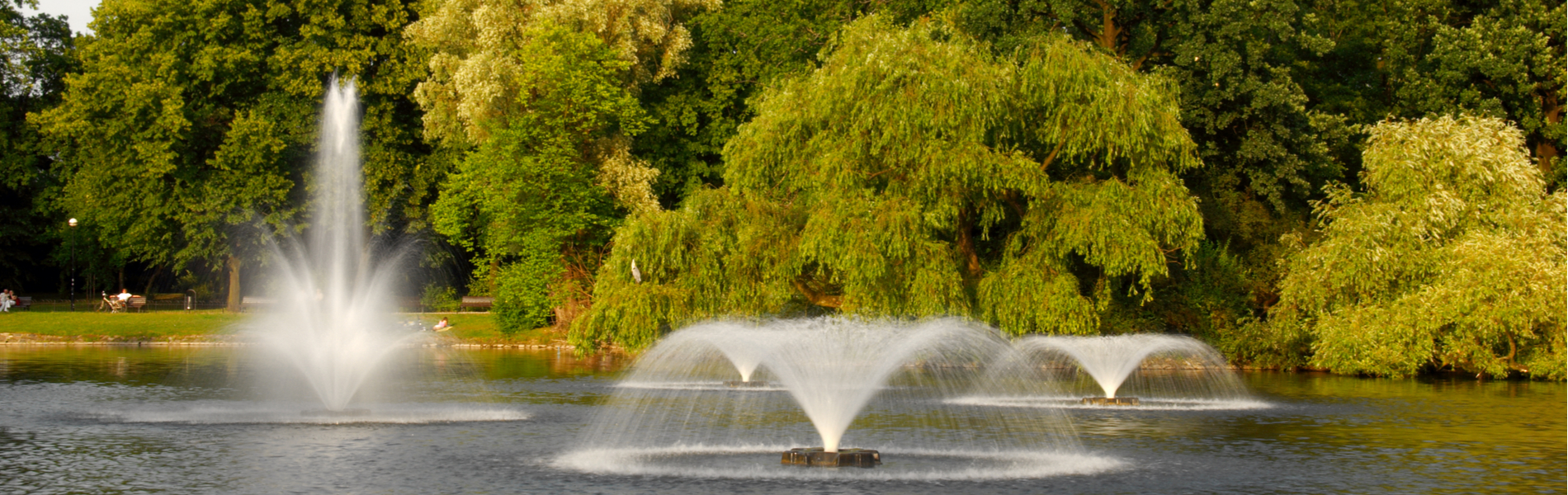 Benefits of Pond Aeration - Central Florida Aquatic Services