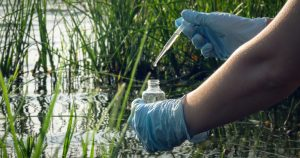 4 Things That Can Throw Your Pond off Balance