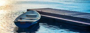 Windermere Aquatic Services