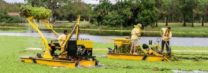 Winter Park Mechanical Weed Removal