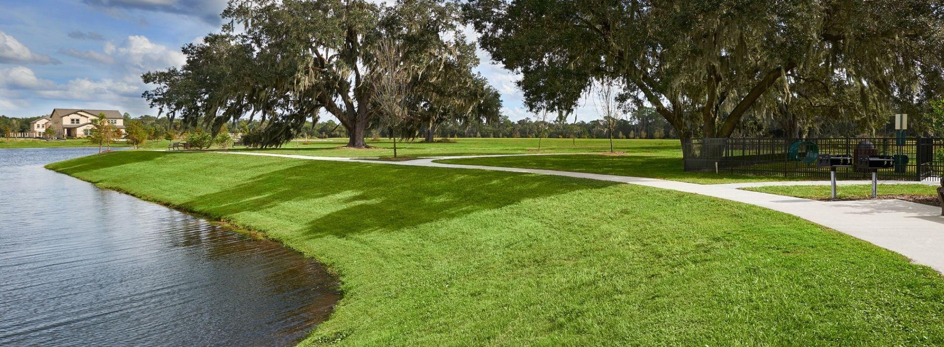 Sod Installation in Orlando